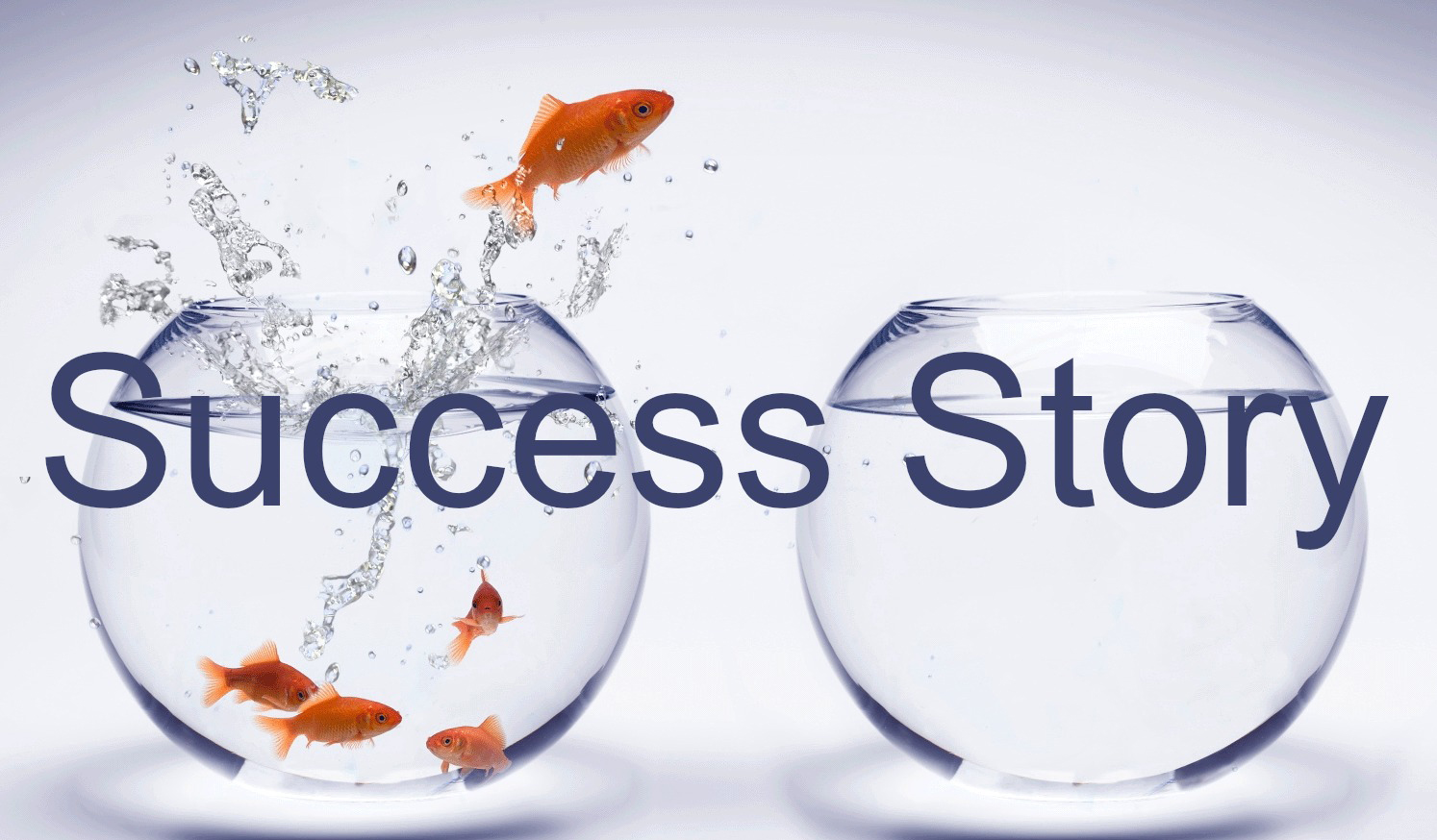 Second Success Stories Collection Campaign